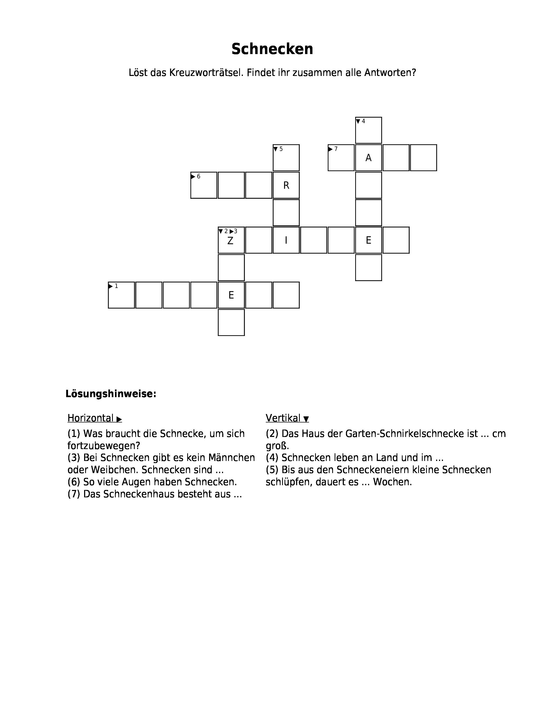 Siebenschläfer Kreuzworträtsel